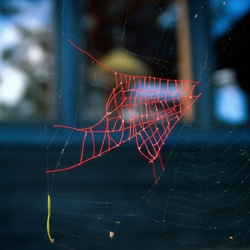 Spiderweb repaired with red sewing thread.